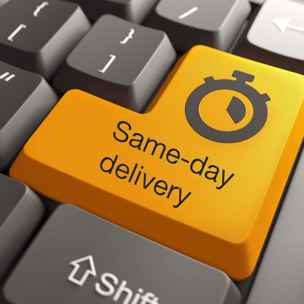 sameday_delivery_the_next_evolutionary_step_in_parcel_logistics_1536x1536_original